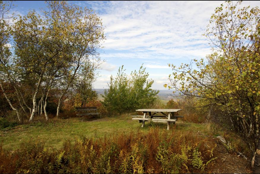 Scenic Fall Big Pocono State Park 1 oconoMtns