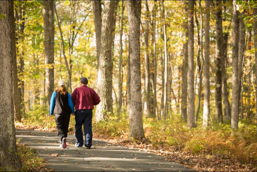 Fall Foliage in the Pocono Mountains
