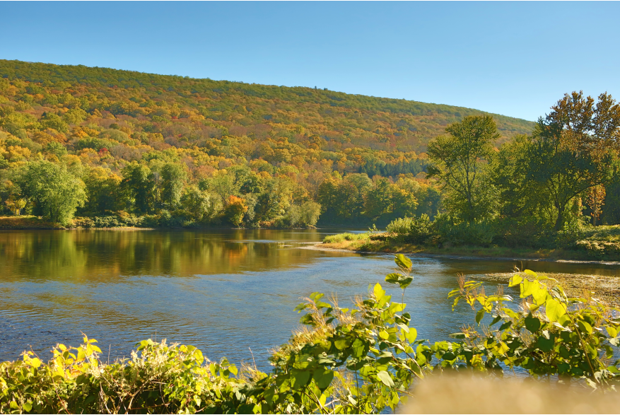 Fall Foliage Forecast for the Pocono Mountains