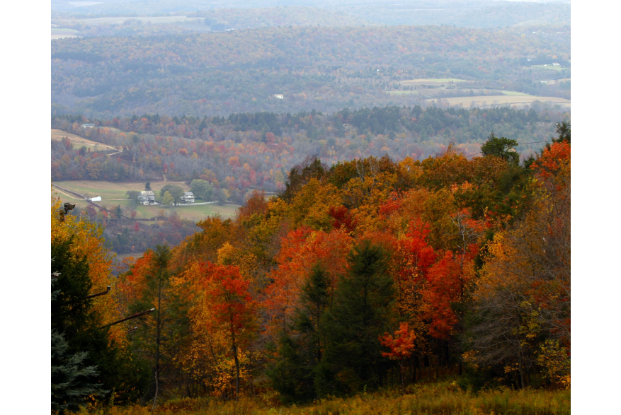 View the Fall Foliage in the Pocono Mountains