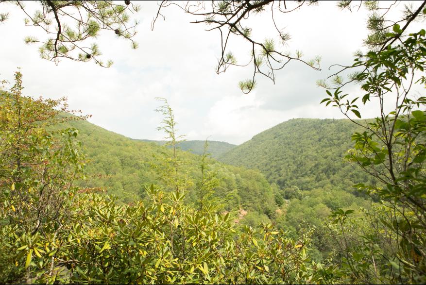 Explore Lehigh Gorge State Park in the Pocono Mountains