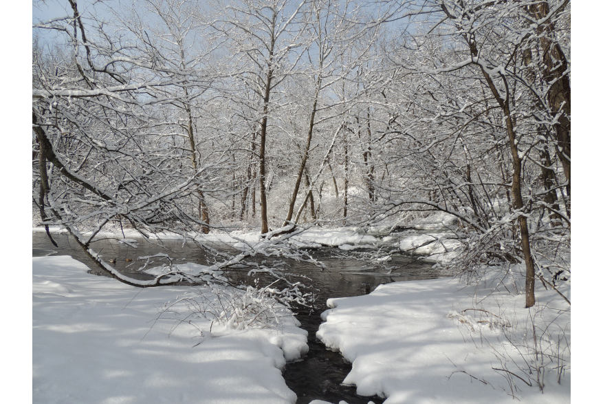 Winter Scenery in the Poconos