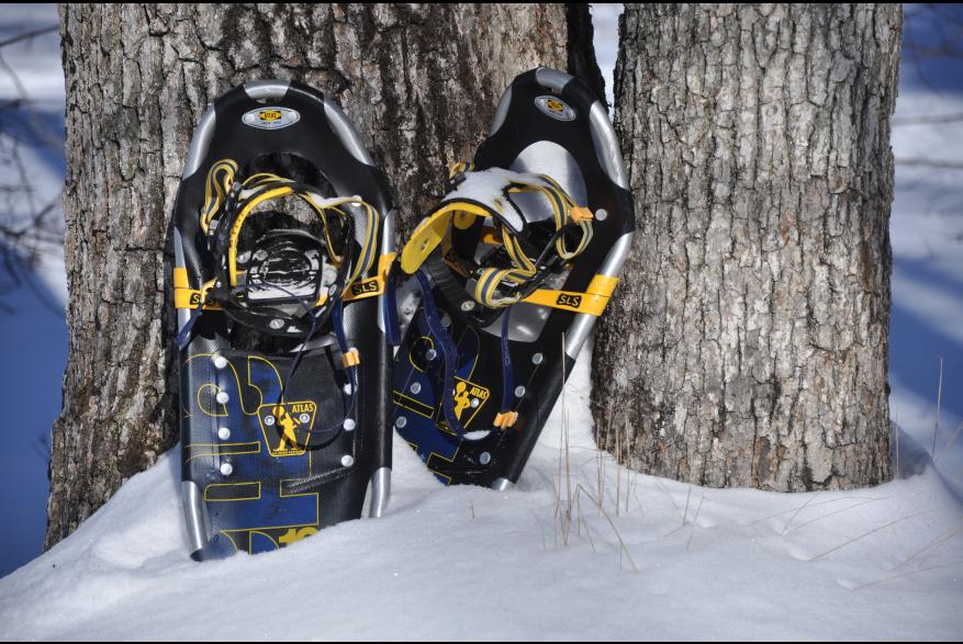Explore the Pocono Mountians on Snowshoes