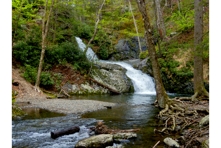 Family Adventure at PEEC on the Tumbling Waters Trail