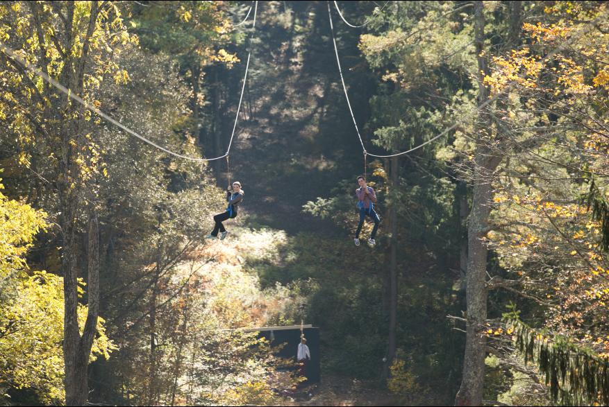 Zip Lining Through the Poconos Forest