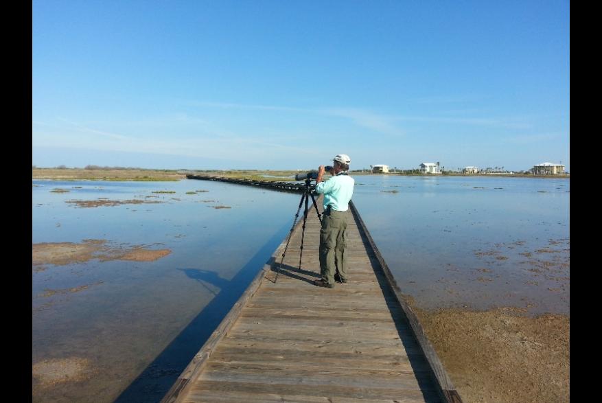 Nature Preserve Birding
