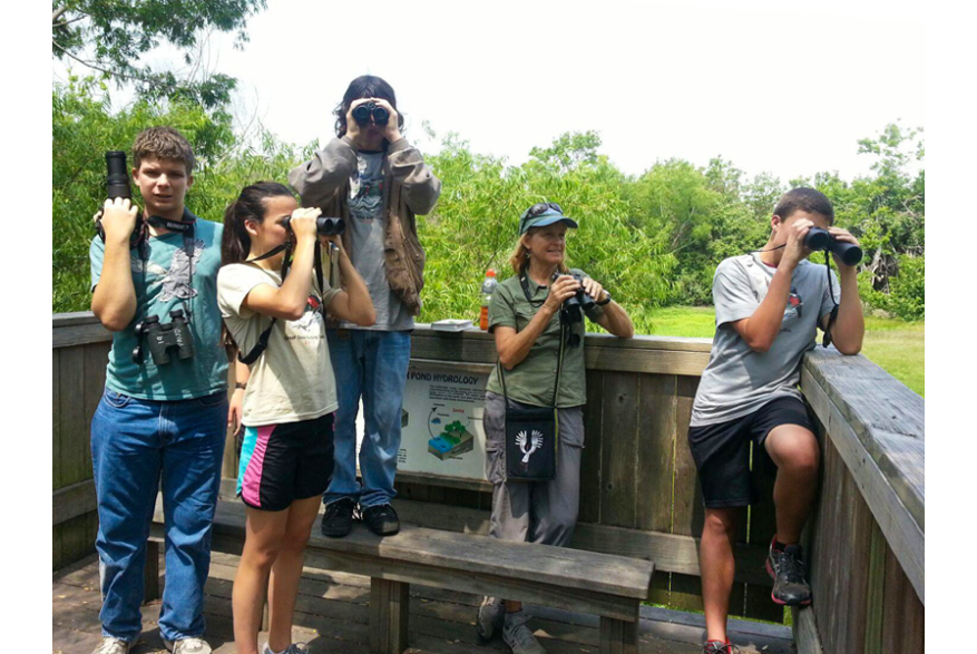 Team Uncommon Terns
