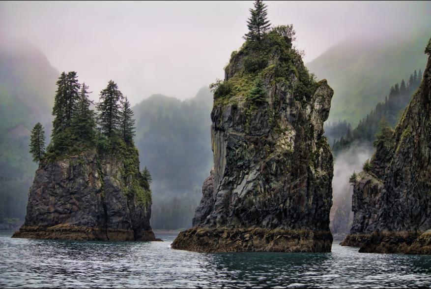 Alaska Kenia Fjords Seward