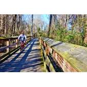 A biker on Cape Fear River Trail
