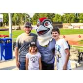 Wodpeckers Feature