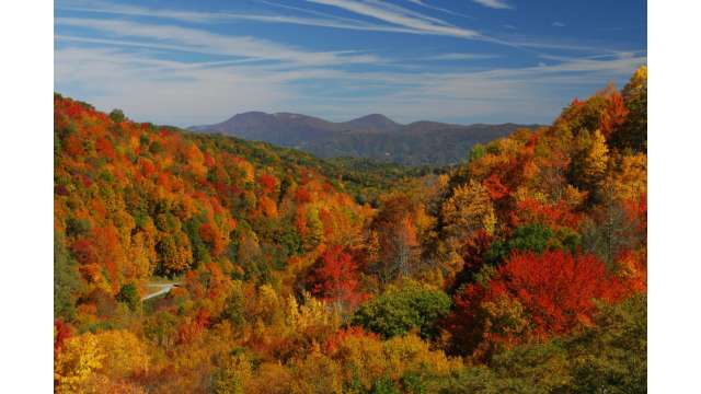 Fall Mountain View | Boone, NC