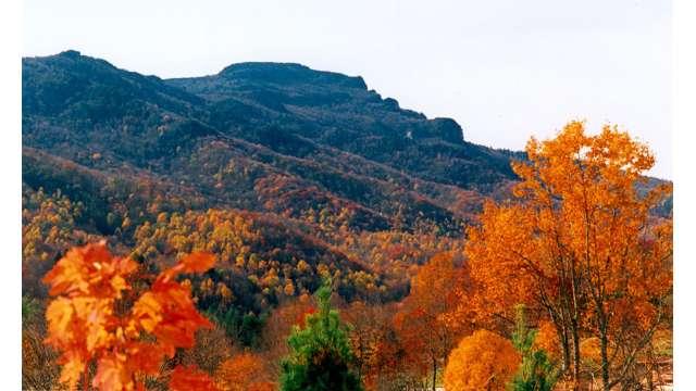 Grandfather Mountain in Fall | Boone, NC