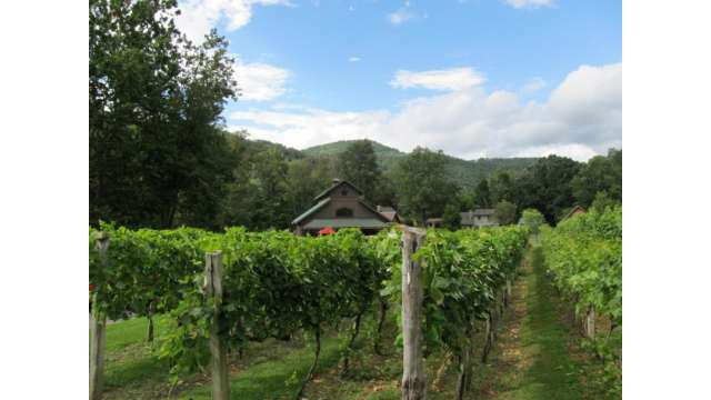 Grandfather Vineyards | Boone, NC