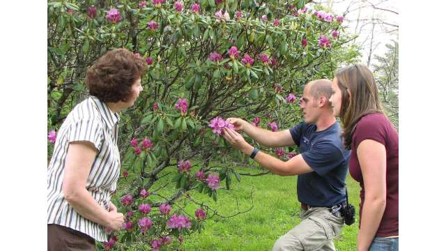 Naturalist Gabe Taylor and participants study the single flower of a Catawba rhododendron cluster