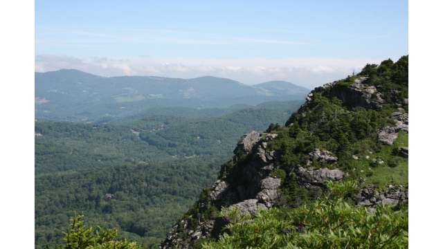 Summer View on Grandfather Mountain | Linville