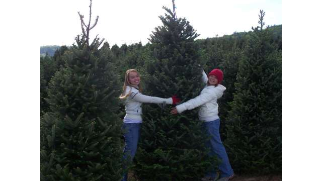 Real Christmas Trees Inspire Hugs | Boone, NC