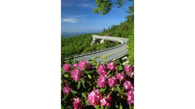 Linn Cove Viaduct in Spring | Blue Ridge Parkway MP 304
