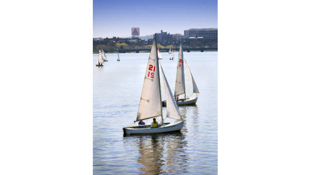sail boats on the charles 0762 2-2