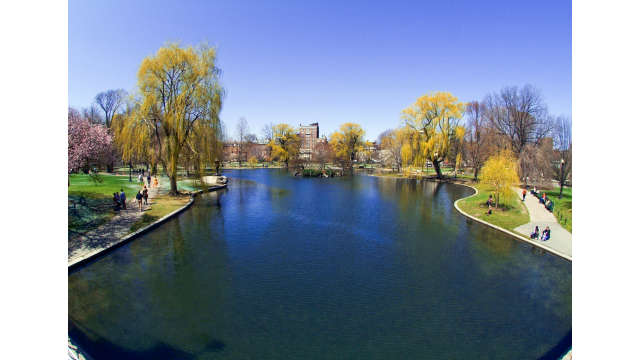 Lagoon in the Public Garden STOCK