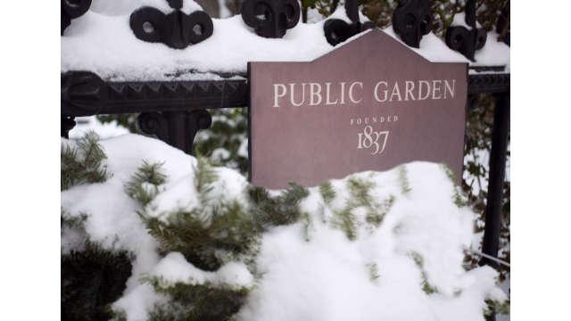 Public Garden in hibernation.
