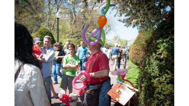 A balloon artist in the Public Garden