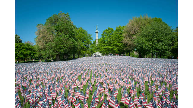 American flags displayed in the Common on Memorial Day weekend