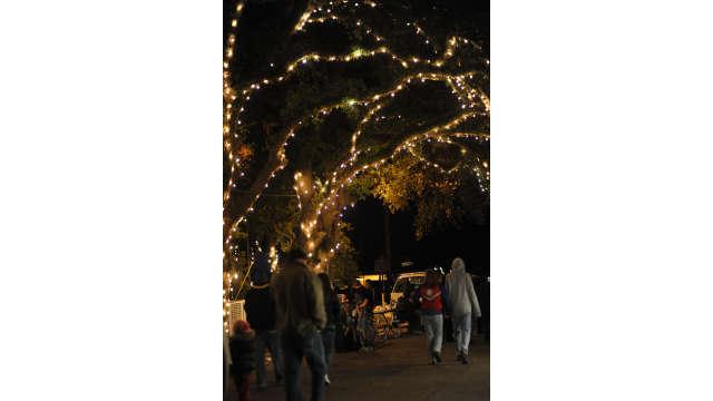 Christmas Under The Oaks.Oaks At Christmas Under The Oaks