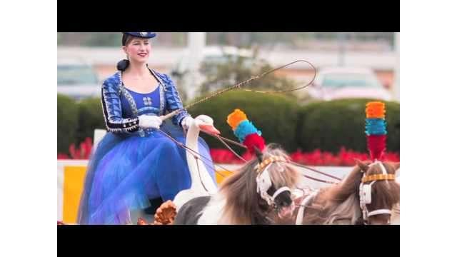 Lextreks: Junior League Horse Show