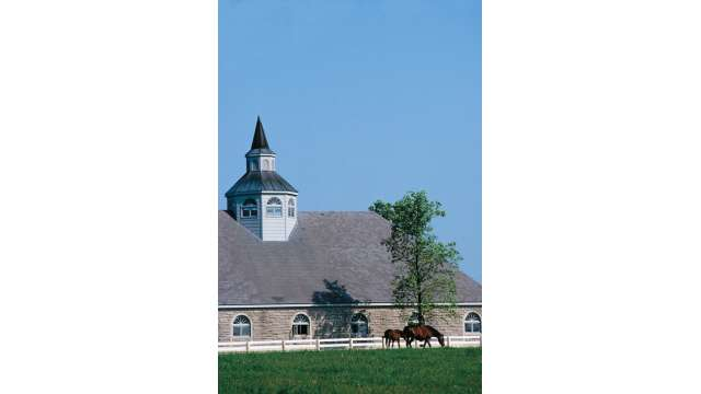 Lexington's Donamire Horse Farm