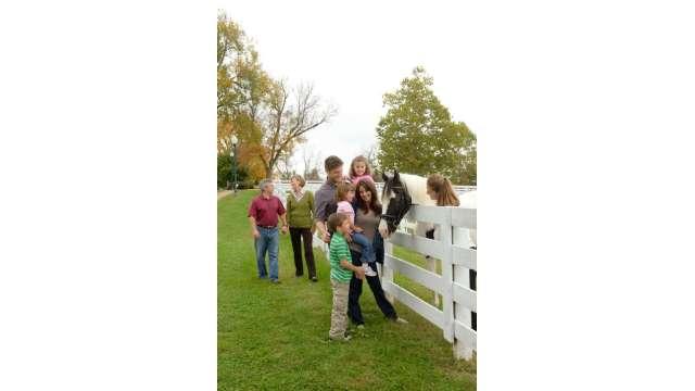Horses at the Kentucky Horse Park