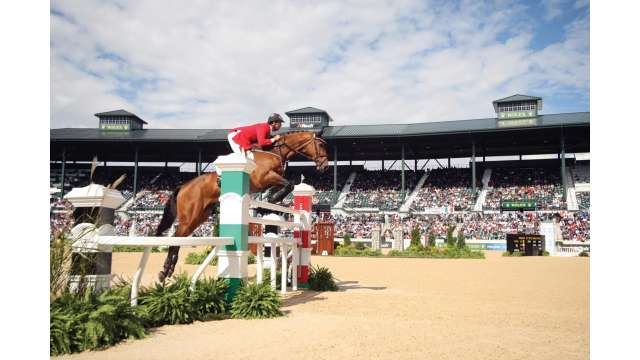 Equine athlete competing in the Rolex Stadium at the Kentucky Horse Park