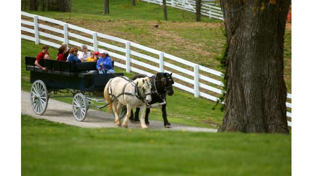 Shaker Village Carriage Ride