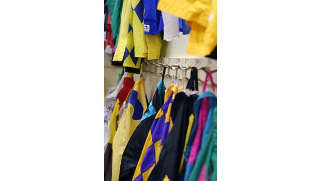 Colorful silks