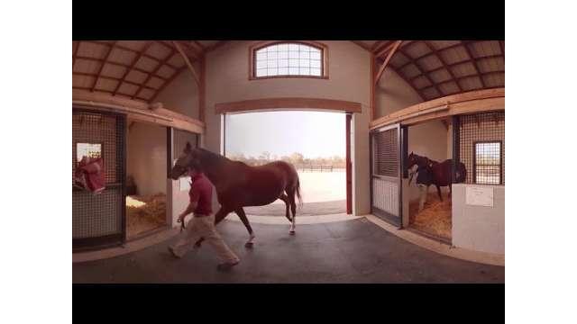 VisitLex 360: Taylor Made Farms