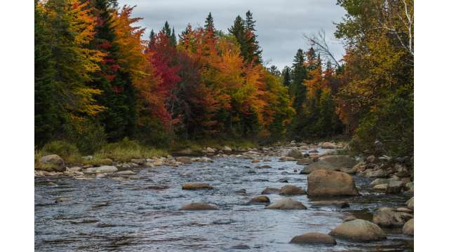 Ausable River by Olympic Jumping Complex 266