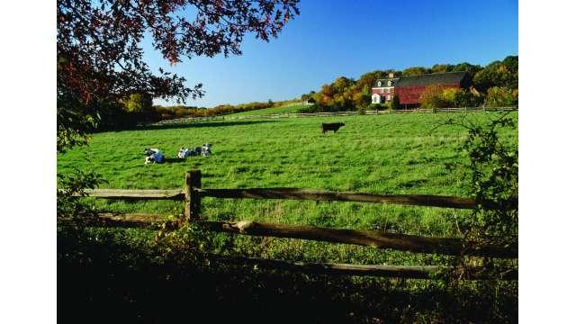 Bethpage Restoration Village