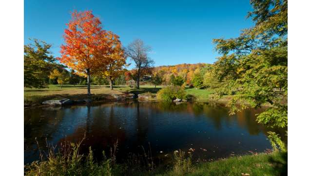 Mountain Top Arboretum 812