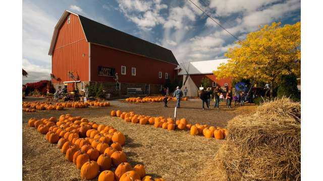 Cobble Creek Farm 1771