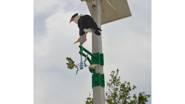 Photo of public artwork, Caracara wind vane