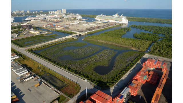 Aerial image of the mangrove enhancement area looking east with cruise ships in the background