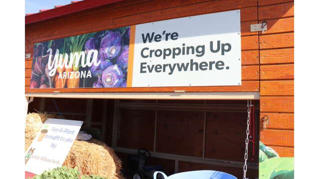Ag to Art Market in Yuma, Arizona