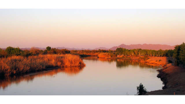 East Wetlands Park at the Colorado River