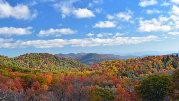 Asheville Blue Ridge Mountains Fall