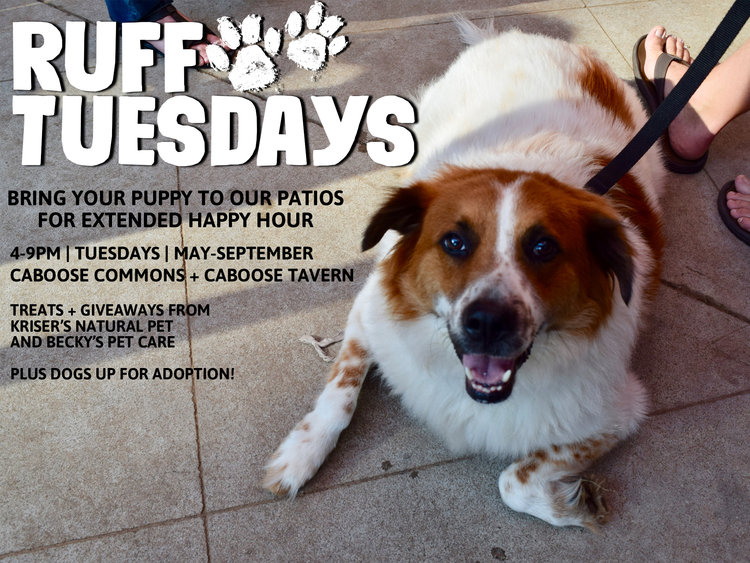 Ruff Tuesdays at Caboose Commons