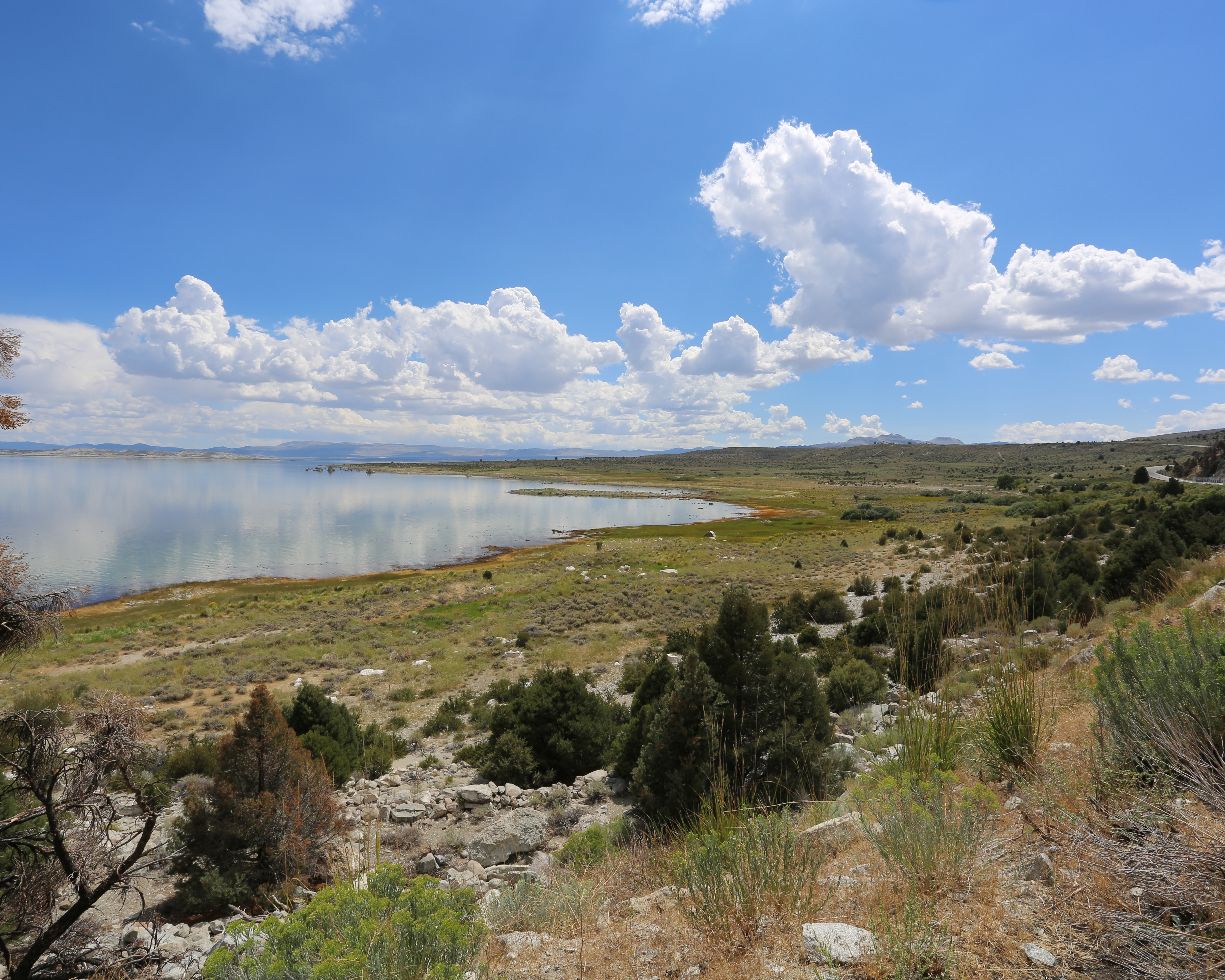 Mono Lake - Old Marina