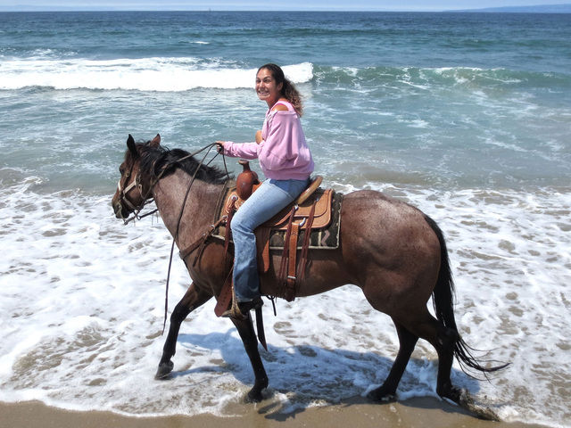Chaparral Ranch Horseback Beach Rides