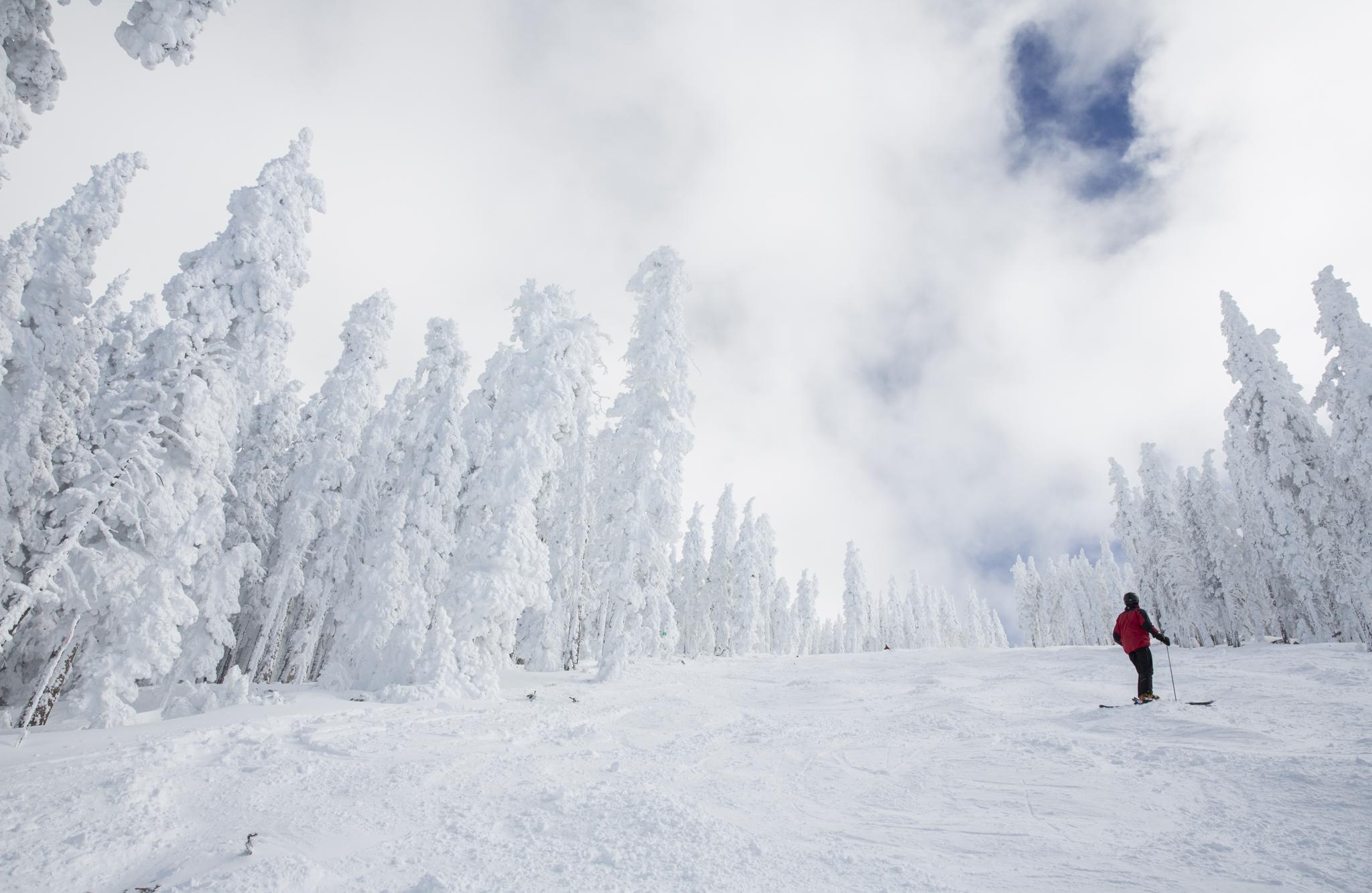 Ski Santa Fe on flagstaff ski map, red river ski area map, aspen ski map, taos ski map, new mexico ski map, pamporovo piste map, red river nm map, jackson hole ski map, mont tremblant ski map, colorado ski map,