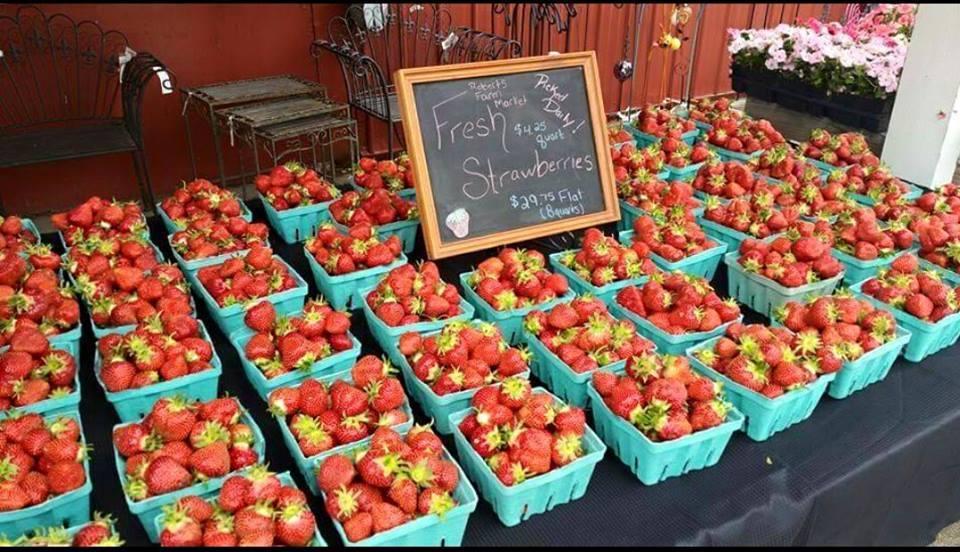 Roberts Farm Market Medina Ny 14103