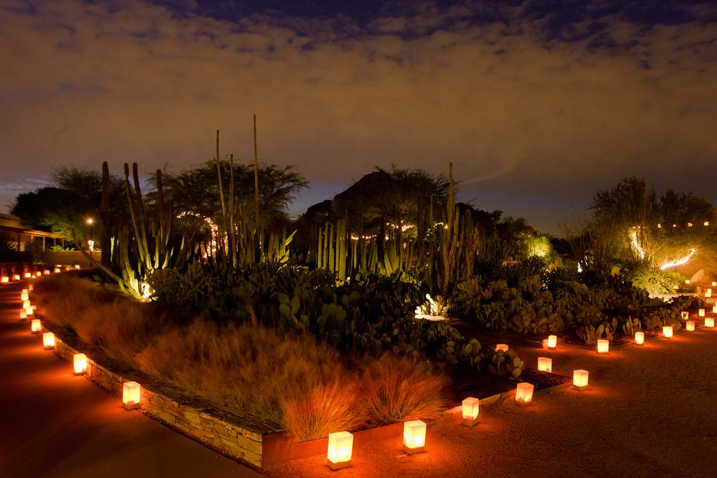 Las Noches De Las Luminarias Phoenix Az 85008