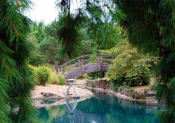 Mizumoto Japanese Stroll Garden, Mizumoto Japanese Stroll Garden Springfield Missouri